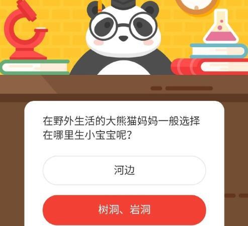 在野外生活的大熊猫妈妈一般选择在哪里生小宝宝呢 -微博森林驿站12月5日森林小课堂答案