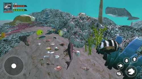 海底大求生游戏下载-海底大求生安卓版最新免费下载