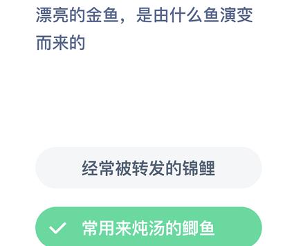 /news/1015.html