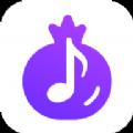 石榴音乐app