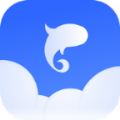 飞鱼天气app